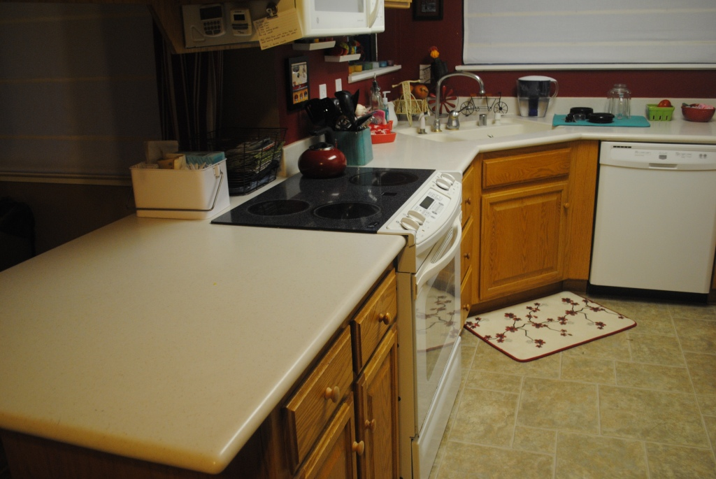 Kitchen 2014_03_08 (08)