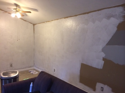 2014 - primed dining room